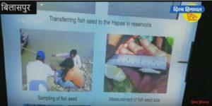 मछली पकड़ने वालों को जेल के साथ जुर्माना भी