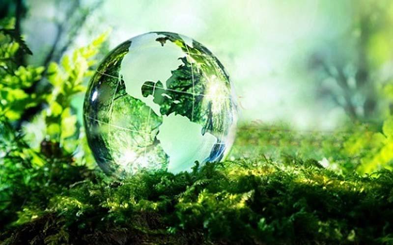 आजीविका और जैव विविधता: कुलभूषण उपमन्यु, अध्यक्ष, हिमालय नीति अभियान