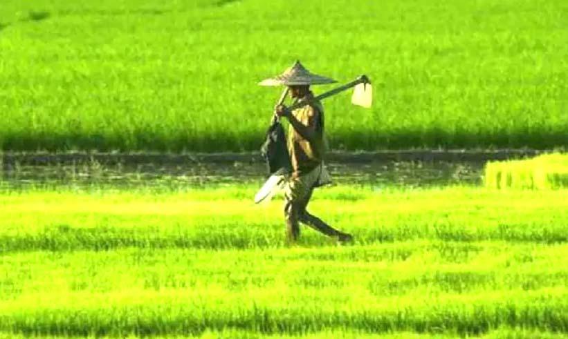 कृषि कानून की प्रतियां देश में बांटी जाएं